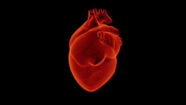 cfmri for heart health diagnostic